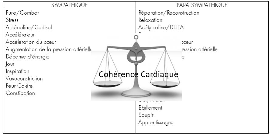 La cohérence cardiaque | blog-christineklein